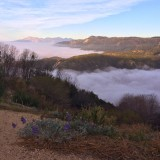 Top of the clouds this morning from Highway 330.