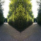 Beauty and poetry of the Versailles gardens. Loeber-Bottero Photography