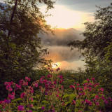 Beautiful sunrise over the lake and the vivid flowers in the front. Reflection of the sunrise in the water.