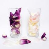 flower petals in a glass