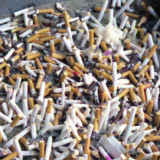 Cigarette butts in an ash tray in Ann Arbor Michigan