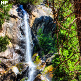 Kings Canyon National Park #waterfall #forest #beautiful #amazing #wilderness #explore #discover #adventure #landscape