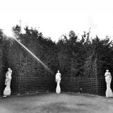 Three statues touched by a sudden sun ray. Mystery and poetry of the Versailles gardens.