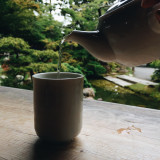 This is definitely one way of relaxation for me, sipping warm tea with a view of greenery. This was taken in the Japanese tea  garden in San Francisco CA