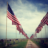 Vietnam memorial flags at the Lamont, Oklahoma cemetery