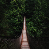 Lynn Canyon suspension bridge in Vancouver B.C.