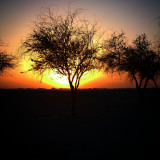 I took this picture in the National Park it was a beautiful sunset