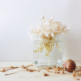 White fragrance flowers decoration