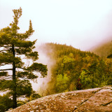Mist and fog on Giant Mountain, in the Adirondacks of New York State.