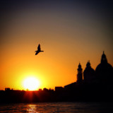 Venice - City of Love