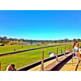 Food, cheese, wine and an exceptional view! Hunter Valley.