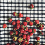 Ripe strawberries on gingham table
