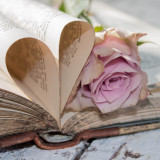 Stilllife containing old book, with pages shaped as a heart and a pink rose