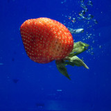 We all live in a strawberry submarine