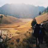 The final steps to Ranu Kumbolo, the jewel of Mount Mahameru in Indonesia. Awesome experience. To read more about my adventure in Ranu Kumbolo, follow my instagram @fuadmisbah or visit my website at fuadmisbah.com