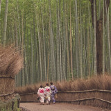 3 Traditional Japanese ladies strolling through the Bamboo Groves