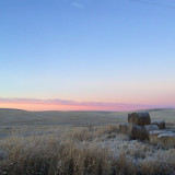 Frosted Palouse Morning