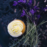 Food photography of lavender flowers and lemon cupcake in spring time.