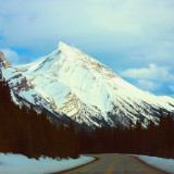 The road less travelled. Canada is magical!