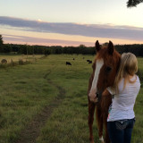A girl and her favorite horse in the pasture at sunset.