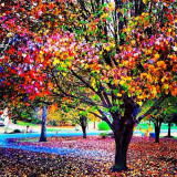 Tree of colorful soul