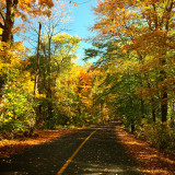 Autumn country roads.
