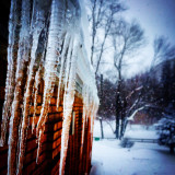 The winter moments that make the frigid air bearable.