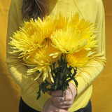 Yellow flowers for you