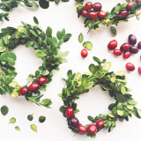 Making Christmas boxwood and cranberry mini-wreaths on a white background.