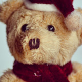 Festive teddy bear