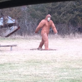 Bigfoot in Minnesota