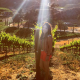 The #goldenhour in the wine fields