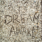 I dream awake