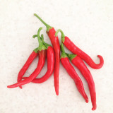 Red hot cayenne peppers top view