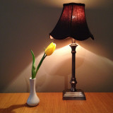Vintage lamp and a tulip