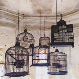 These cages once held carrier pigeons used by the royal family to deliver letters | Udaipur City Palace, Rajasthan