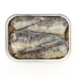 Sardines packed in tin