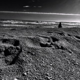 This morning, the sea: footprinta in the sand like those of the astronauts on the moon...