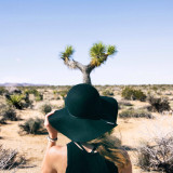 Young fashionable woman looking at a Joshua tree