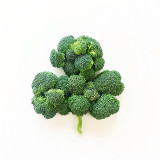 Sham-roccoli: Broccoli vegetable arranged in a shamrock shape on white background.