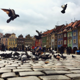 Old town of Poznan