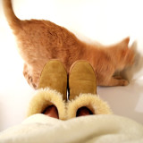 Puss and booties.