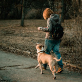 Young woman walking in the spring park with her staffordshire terrier dog at evening while sunset.