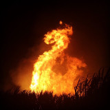 I captured this Dragon in the Sugarcane fire across the road from my house in Woodburn, NSW, Australia. It was the right place at the right time.