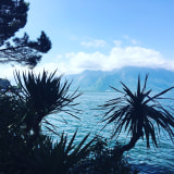 Peace In Montreux