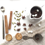 Spices and coffee beans on the white background