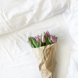 Tulips on a bed