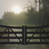 Misty morning dew on a country road and gate...