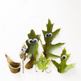 Silly crunchy green autumn leaf family with googly eyes on a bright white background.