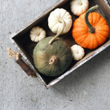 Multi-colored pumpkins in a rustic decorate crate.